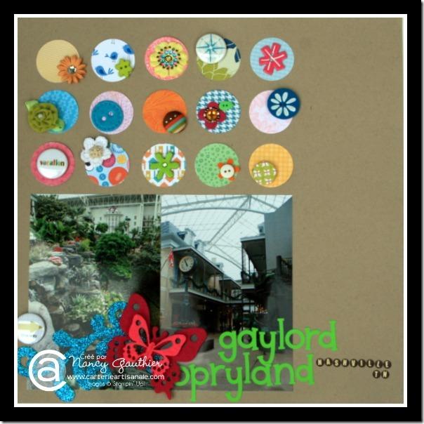 IMG_3457-001