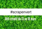 scrapenvert