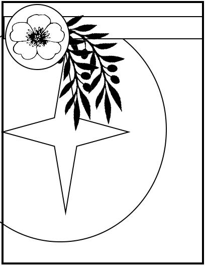 pinblanc